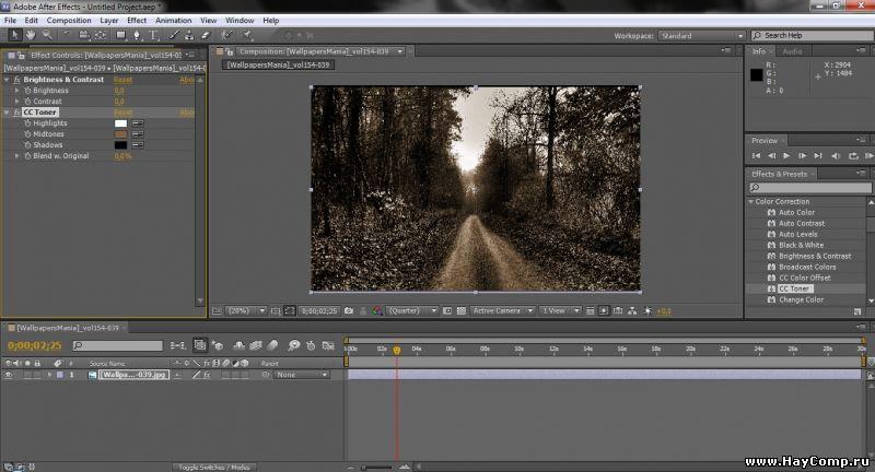 Adobe After Effect CS5.5